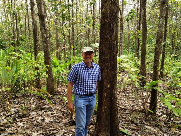 Teak_Hardwoods_Plantation_2013_1